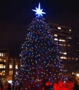 Tree Lighting in Boston