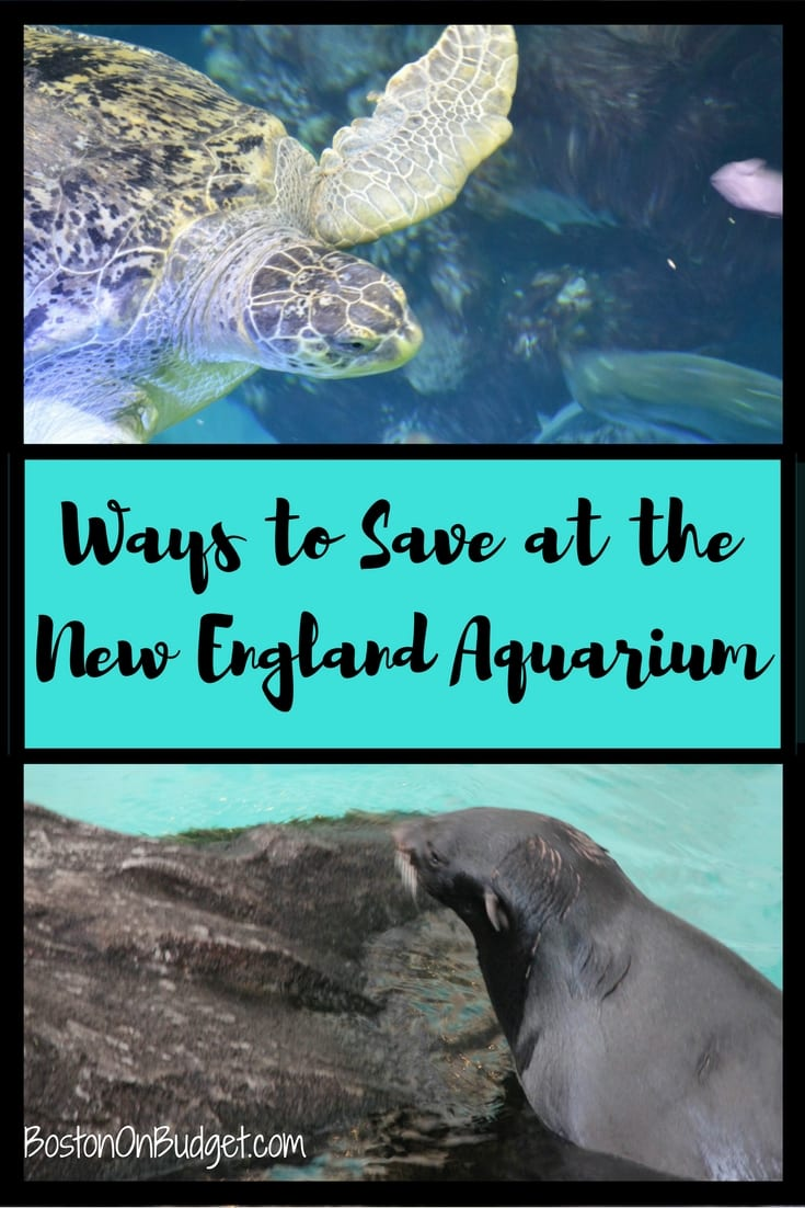 Disounts for the NE Aquarium in Boston