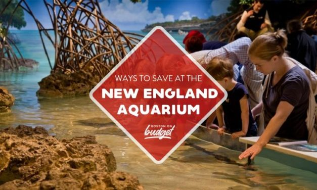 Ways to Save at the New England Aquarium