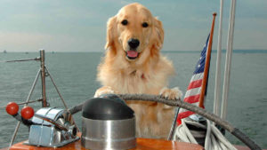 Dog Days of Summer Cruise Tickets