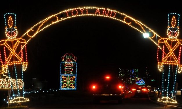 Bright Nights at Forest Park: Dates, Hours, Discounts, and More