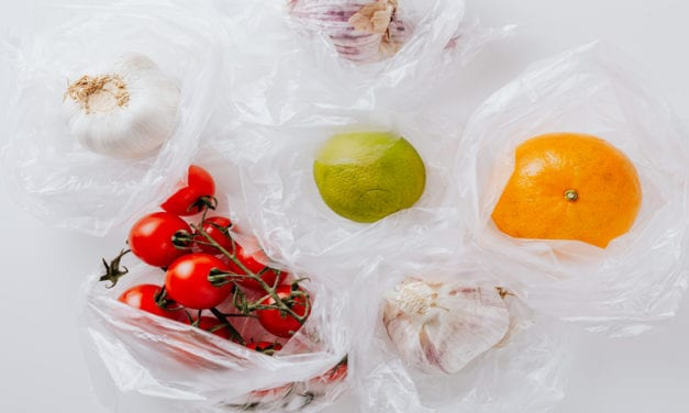 Plastic Bags in Boston Permitted until September 30