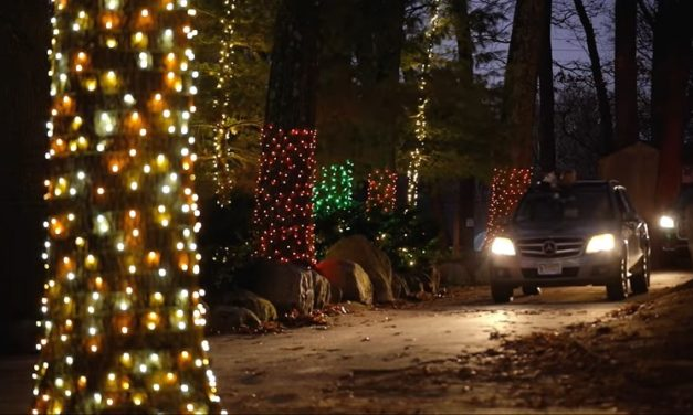Southwick Zoo's Winter Wonderland Drive-Thru Light Show is Back